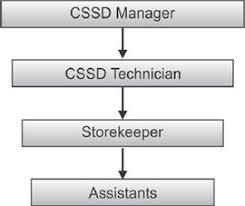 Cssd Workflow Chart Jaypeedigital Ebook Reader