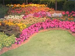 color garden. Choosing Several Colors Color Garden