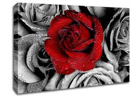 flowers red rose on a sea of b n w canvas art on red canvas wall art uk with red rose on a sea of b w flowers canvas stretched canvas
