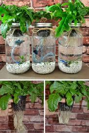 indoor hydroponic herb garden kit inspirational 58 best indoor aquaponics images on