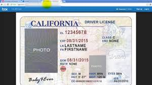 Drivers Card - Templates Station Download Texas License State Template Id
