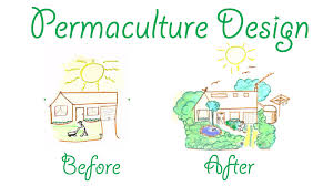 Basic Permaculture Design Before And After Permaculture Design Permaculture Visions