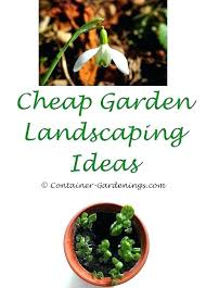 garden catalogs container gardening trellis ideas and decor free sweet catalog large garden catalogs