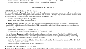 Career Change Resume Examples Sample Of Security Supervisor