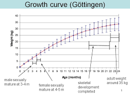 Pig Growth Chart Sus Scrofa Pig Domestic Wild Boar