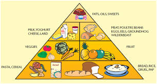 Food Group Pyramid Chart Balanced Diet Information Sheet Children For Health