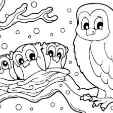 Small Picture Snowy Owl Coloring Page Beautiful Ideas About Owl Coloring Pages