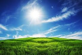 grass and sky backgrounds.  And Grass Sky Picture 3 And Grass Sky Backgrounds S