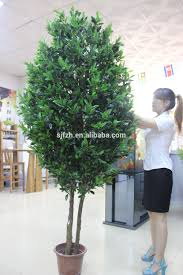 Decorative Indoor Trees Decorative Artificial Plants And Olive Trees 8ft Tall Types Of