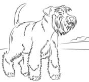 Disegni Di Cani Da Colorare Pagine Da Colorare Stampabili
