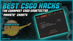 the cheapest csgo undetected private cheats 5dollarcheats youtube