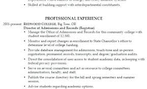 College Application Resume Examples Mesmerizing Sample Resume For College Application Resume For College Application