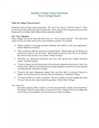 Sample Email Letter Copy Examples Of College Essays Sample Email