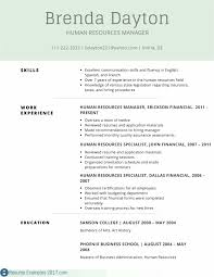 Simple Cv Sample For Teacher