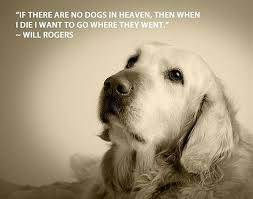Quotes About Dogs Fascinating Quotes About Dogs And People WeNeedFun