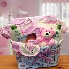 deluxe organic new baby gift basket
