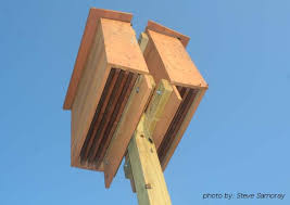 Diy Bat House Plans   Modern Home    Plans Designs On Home If You Already Have A Bat House  The Bat House Forum Can Be A