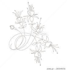 フクシア 夏の花 花 植物のイラスト素材 Pixta