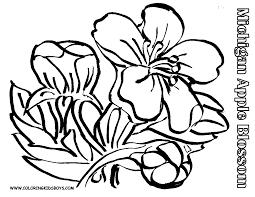 74 Dessins De Coloriage Fleur Imprimer Sur Laguerche Com Page 6