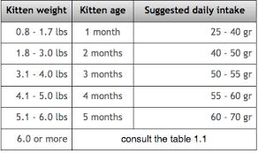 Cat Weight Chart By Month Average Kitten Weight Chart Kg Www Bedowntowndaytona Com