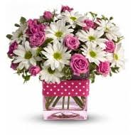flower delivery albuquerque nm