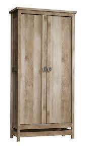 Loon Peak Sunlight Spire 2 Door Storage Cabinet Reviews Wayfair