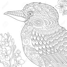 オーストラリア ワライカワセミ鳥の着色のページフリーハンド スケッチ大人抗ストレス塗り絵を描画します