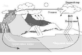 Реферат на тему Круговороты веществ в природе   почвы растений вода накапливается в атмосфере и рано или поздно выпадает в виде осадков пополняя запасы в океанах реках озерах и т п