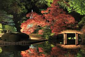 japanese garden lighting. Modern Outdoor Lighting Japanese Garden