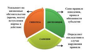 Курсовая работа Понятие и виды норм права Понятие структура виды норм права курсовая