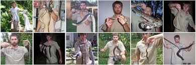 Pictures Venomous Poisonous Snakes Snake Florida xfqavx