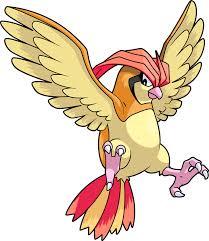 Pokemon 2017 Shiny Pidgeotto Pokedex Evolution Moves
