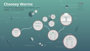 Choosey Worms by Sarah Hunter