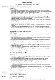 Manager Hr Business Partner Resume Samples Velvet Jobs
