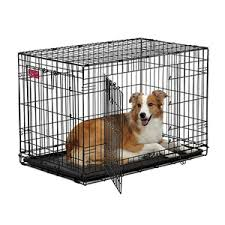 Midwest Dog Crate Size Chart Midwest Contour Double Door Dog Crate