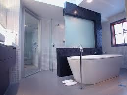 Bathroom Skylight Design Ideas Decoration How To Decorate A Living