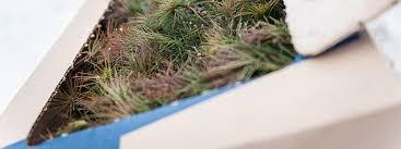 <b>High Quality</b> Forest Samplings   Pohjan Taimi