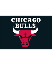 Chicago Bulls Logos Iron Ons,iron on Transfers