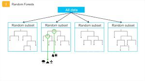 Algorithms Exposed Random Forest Bccvl