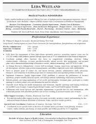 healthcare executive resume writer sample r sum global e commerce amp e business executive an expert resume