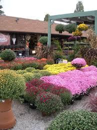 garden store morristown nj. flaggs-garden-center garden store morristown nj d
