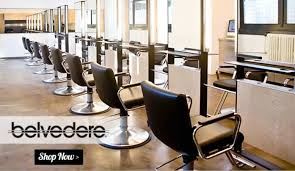 belvedere salon chairs. Photo 5 Of 6 Superior Belvedere Salon Furniture #5 Equipment Chairs V