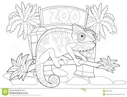 Small Picture Zoo Coloring Pages Coloring Books 8255