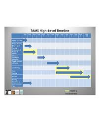 Project Planning Timeline 9 High Level Project Plan Examples Pdf Examples