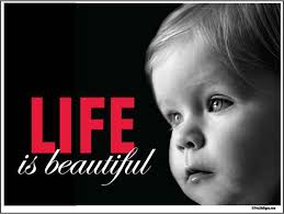 Pro Life Quotes Inspiration Pro Life Directory Of Our Pro Life Pages
