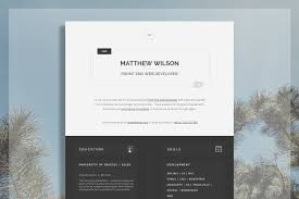 Web Developer Cv Tech Resume Resume Templates Creative Market