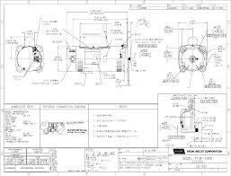 Century Motors Wiring Diagram Magnetek Pool Pump Wiring Diagram Wonderfully Motor Of