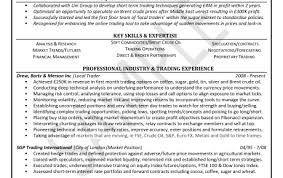 it professional cv writing