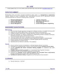 Executive Summary Accounting Resume Example How To Write A Senior