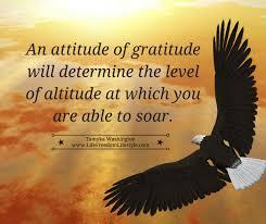 essay attitude determines altitude essay attitude determines altitude